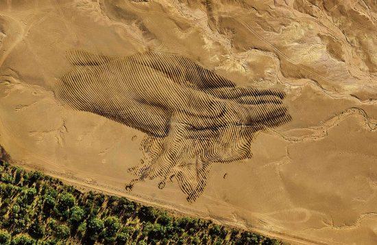Flujo perpetuo, de Jorge Rodríguez-Gerada en Marruecos